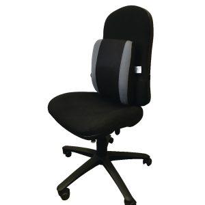 ergonomic back rest